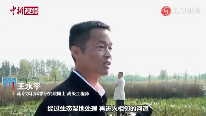 江苏泰兴:污水处理厂尾水涵养湿地