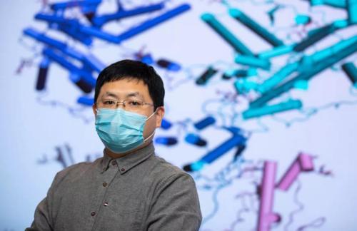 西湖大学成功解析新冠病毒细胞受体的空间结构插图