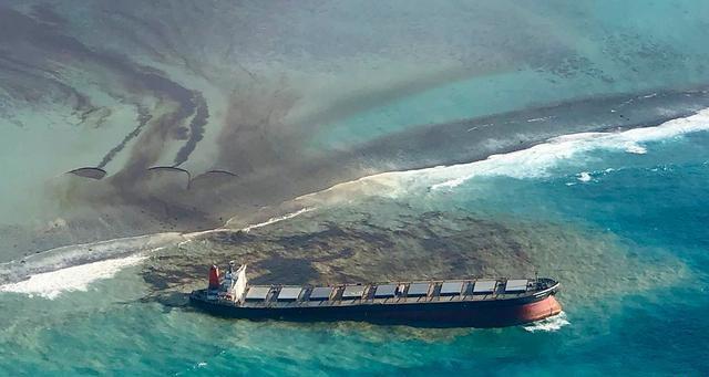 """【鲨皇】_千吨燃油毁了曾经的天堂:毛里求斯海域漏油影响""""极其可怕"""""""