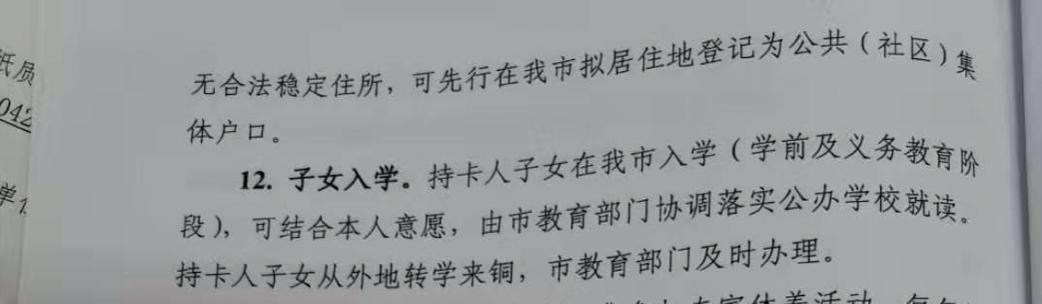 铜陵市人民政府官网公布的《关于印发铜陵市发展民营经济突出贡献人才VIP服务卡制度暂行办法的通知》相关细则。 图片来源于政府网站