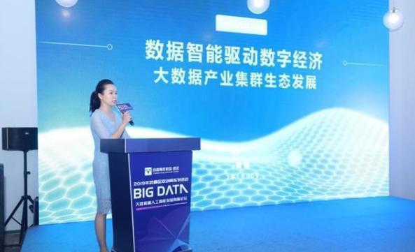 武昌将成立大数据 和人工智能产业联盟