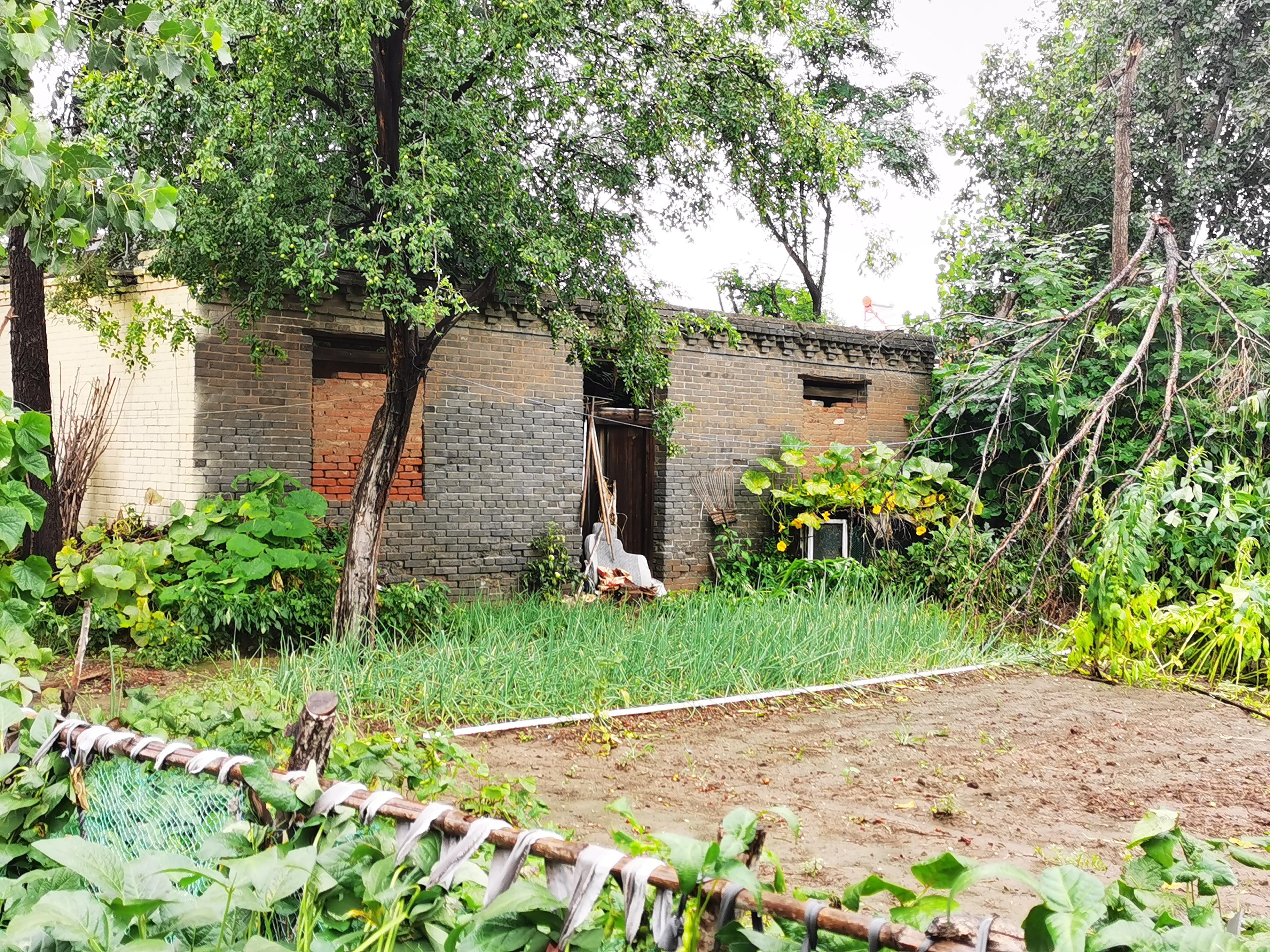 赵智勇在农村老家的房屋,屋顶已倒塌。澎湃新闻记者 朱远祥 图