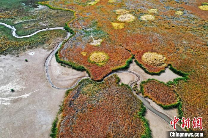 航拍张掖黑河湿地国家级自然保护区高台段的明塘湖湿地。 郑耀德 摄