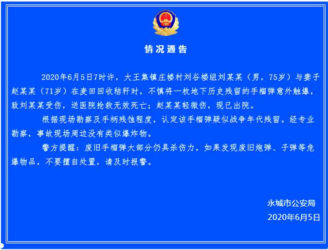 【日本强轮视频电影诊断分析工具】_河南永城村民意外触爆地下历史残留手榴弹 致一死一伤