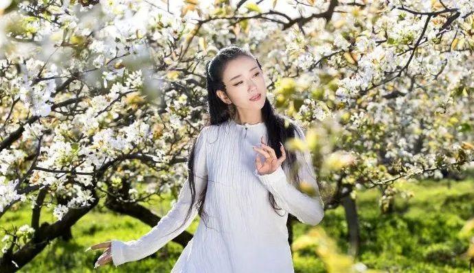 【主机 域名】_62岁杨丽萍不生孩子遭唾骂,1万人点赞背后,世界对女人恶意有多深?