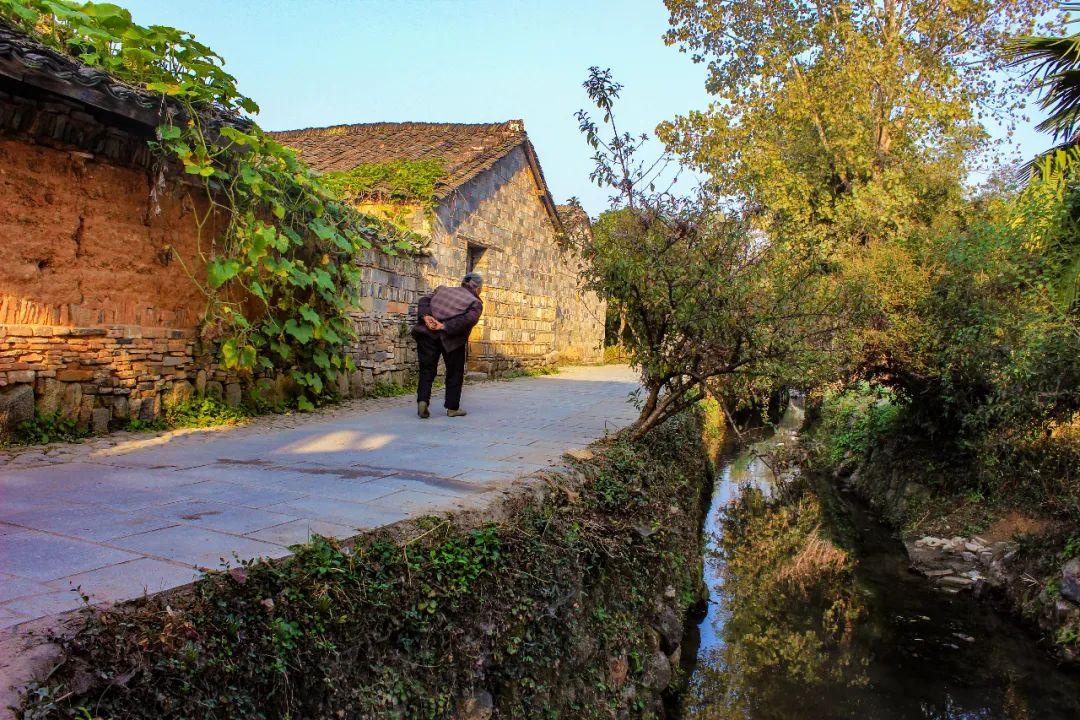 深度   乡村旅游开发运营中的误区及对策