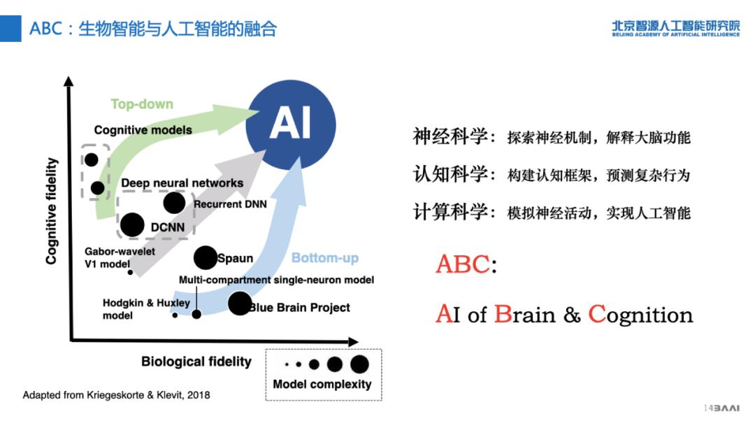 """打造生物智能和人工智能""""双螺旋"""",智源研究院发布""""人工智能的认知神经基础""""重大研究方向"""