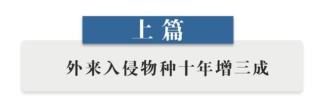 【网络营销策略】_中国已发现660多种外来入侵物种,尤须警惕致病有害生物