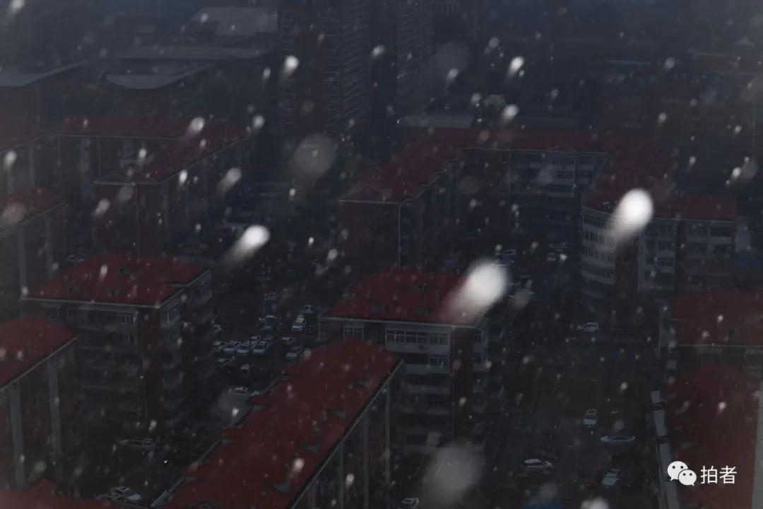 北京初雪最全图集来了!一文看遍城里城外 最新热点 第1张