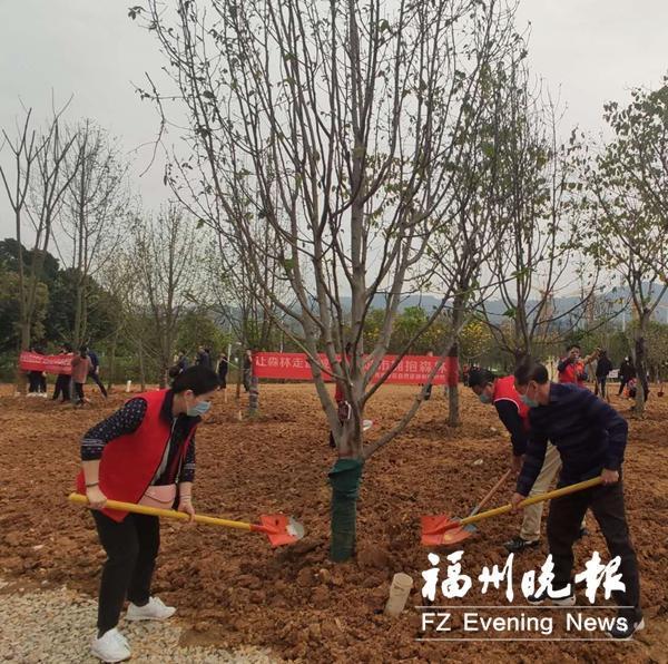晋安湖公园景观绿化工程正式启动建设。