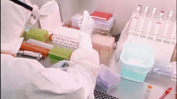 每天五百份,上海六院扩容核酸检测实验室