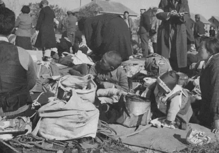 上图_ 二战后日本民众在垃圾桶里争抢食物