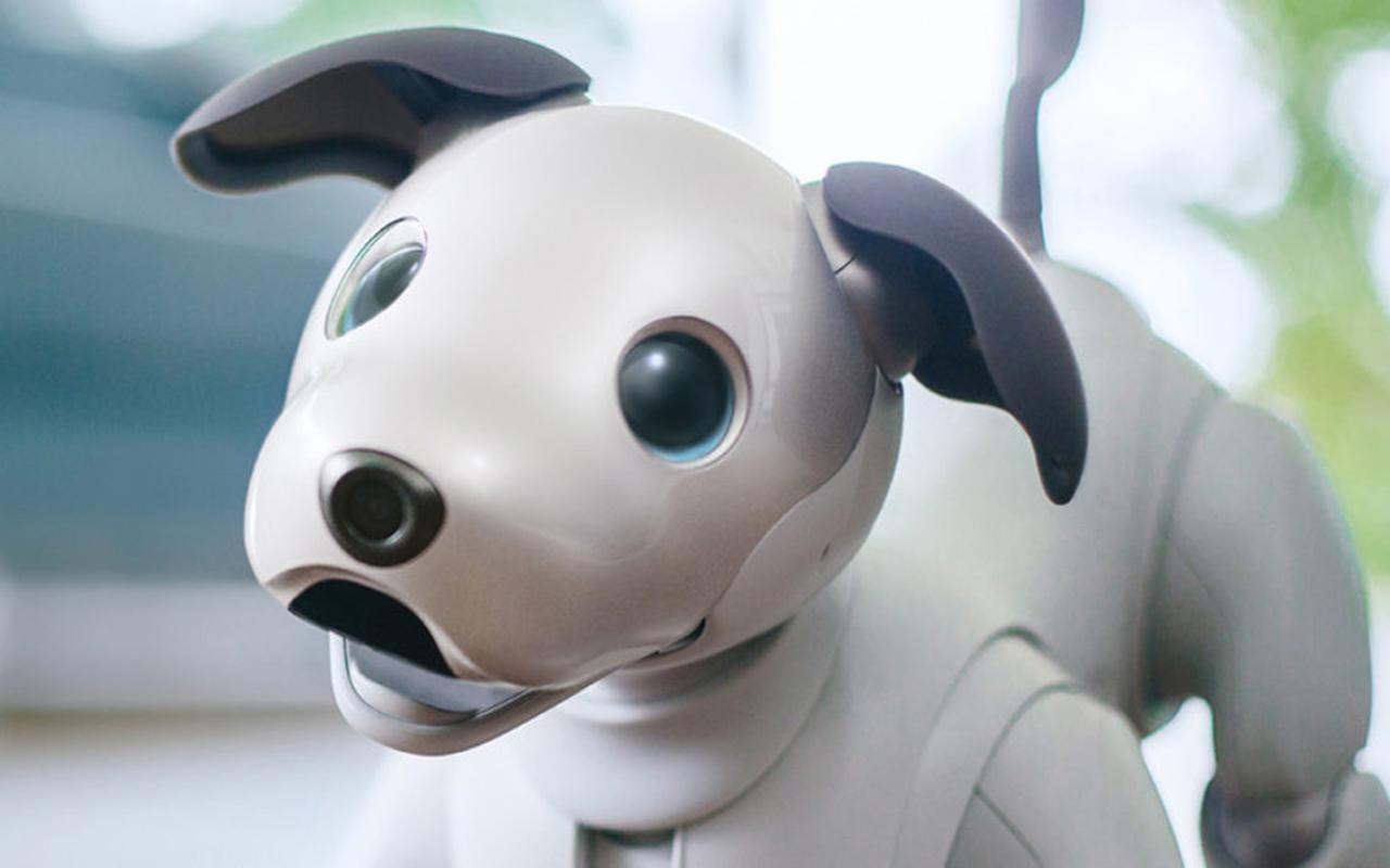 索尼将对所有人工智能产品进行伦理审查