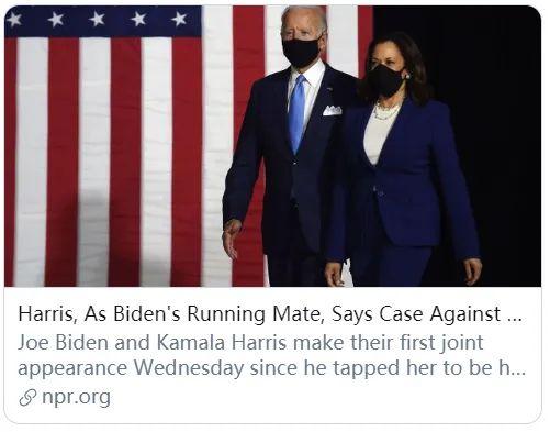 【莱芜网站优化】_拜登携手哈里斯开启竞选,首位少数族裔女副手能带来多大帮助?