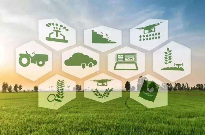 全球农业人工智能市场将迎来快速增长
