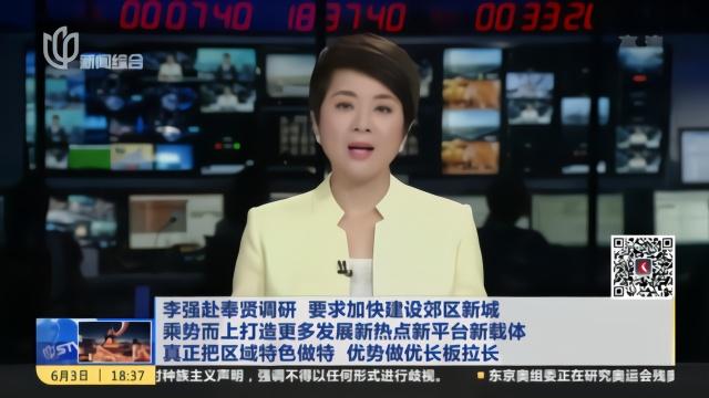 李强赴奉贤调研河长制,看特色产业和新城建设