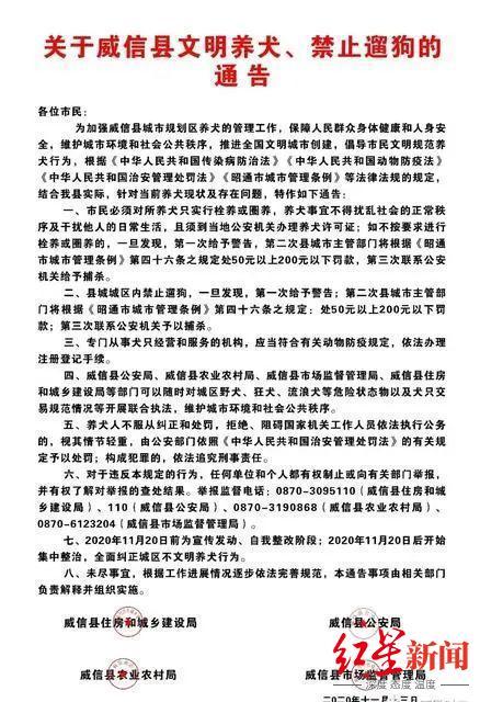 """【彩乐园app登dsn393丶com】_云南威信""""禁止遛狗""""风波背后:有人称被咬投诉无门"""