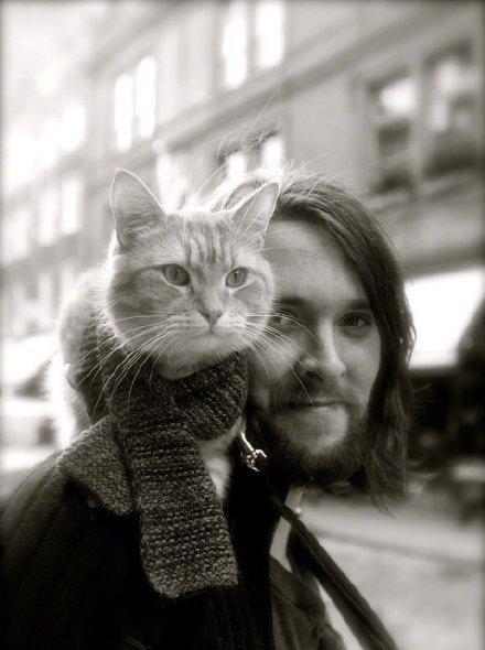 """""""流浪猫鲍勃""""去世 主人詹姆斯缅怀:生活失去了光芒"""