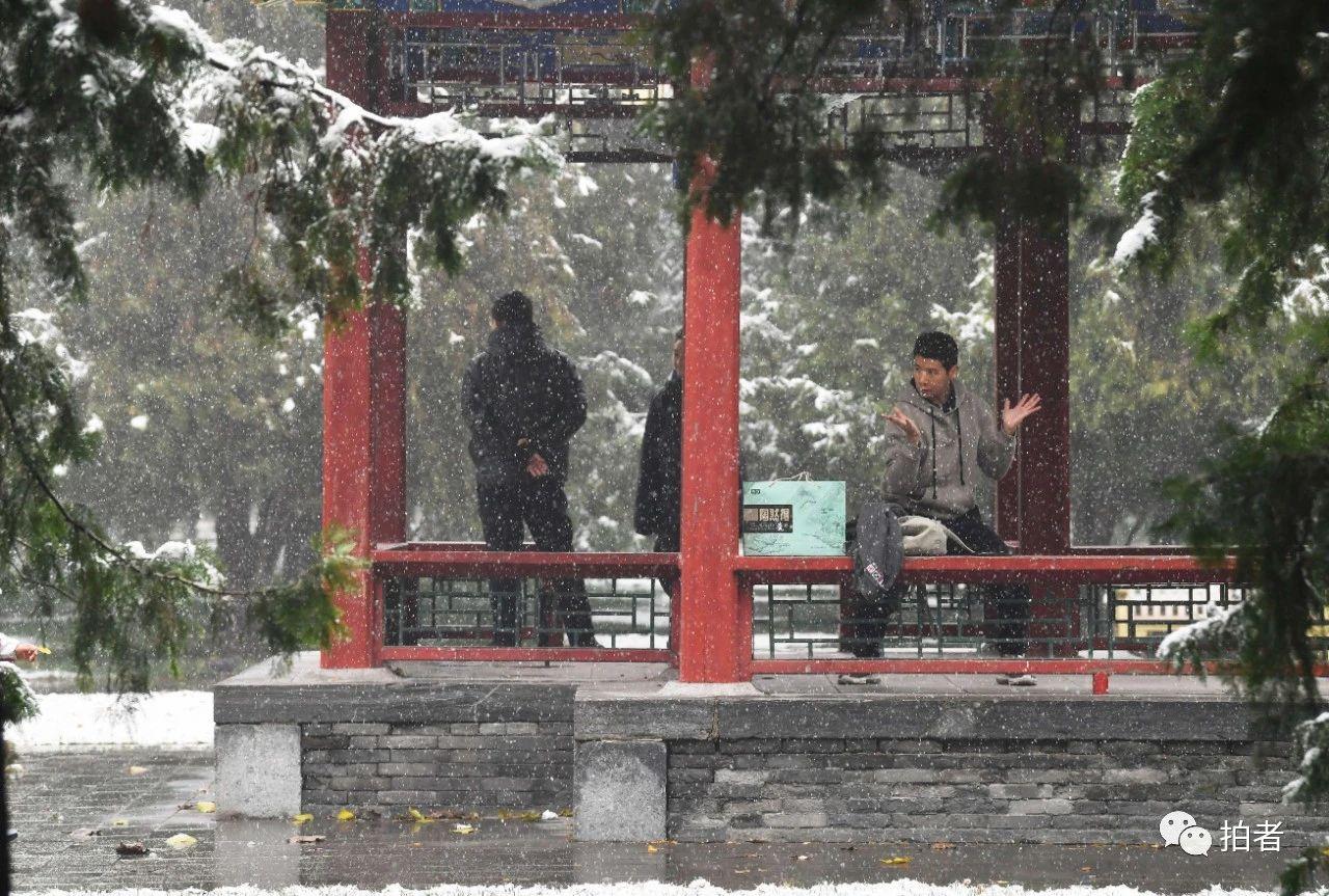 北京初雪最全图集来了!一文看遍城里城外 最新热点 第14张