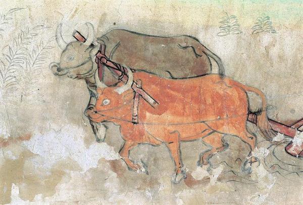 二牛抬杠 榆林窟第25窟 中唐