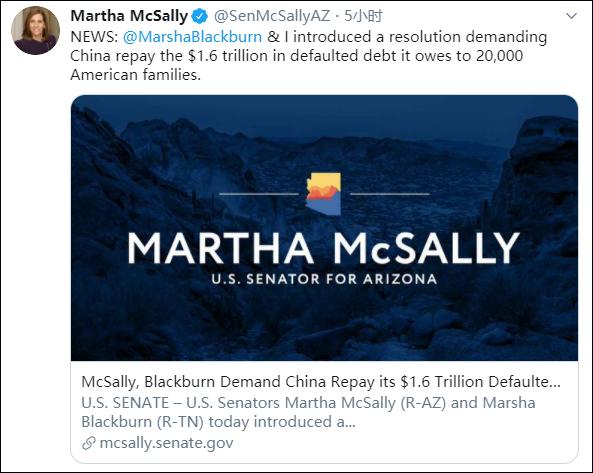 亚利桑那州参议员玛莎·麦克萨利发起提案,推特截图