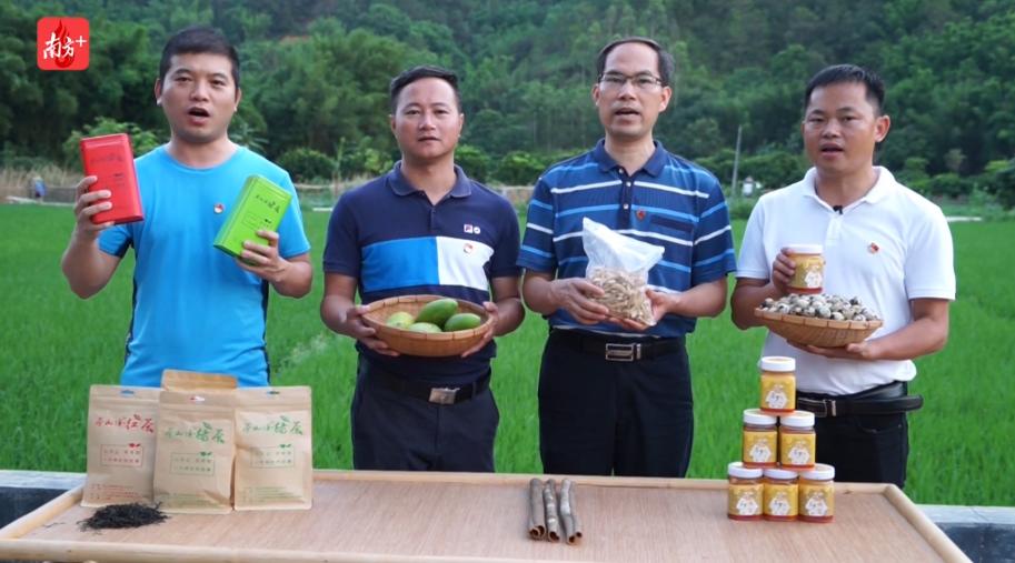 蜂蜜芒果鹌鹑蛋,佛山驻村书记为云浮农产品直播带货