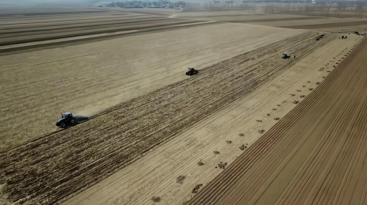 今年辽宁保护性耕作任务为800万亩!补贴资金3.2亿元