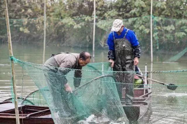 江苏渔民一年捞起7个可疑窃密装置,获奖励