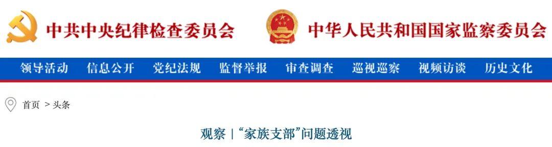 【炮兵社区app网站诊断】_小小村支书,为啥被中纪委点了名?