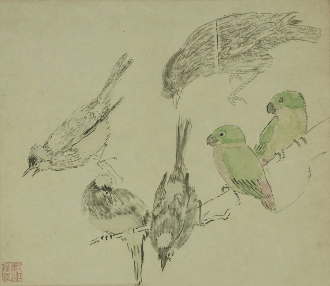 禽鸟写生稿 黄宾虹 27.1×31.5cm 浙江省博物馆藏