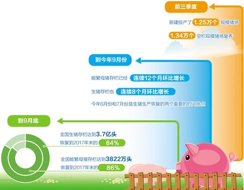 【海盗湾网站】_猪肉价格七连降背后:生猪产量持续恢复,产业转型压力犹存