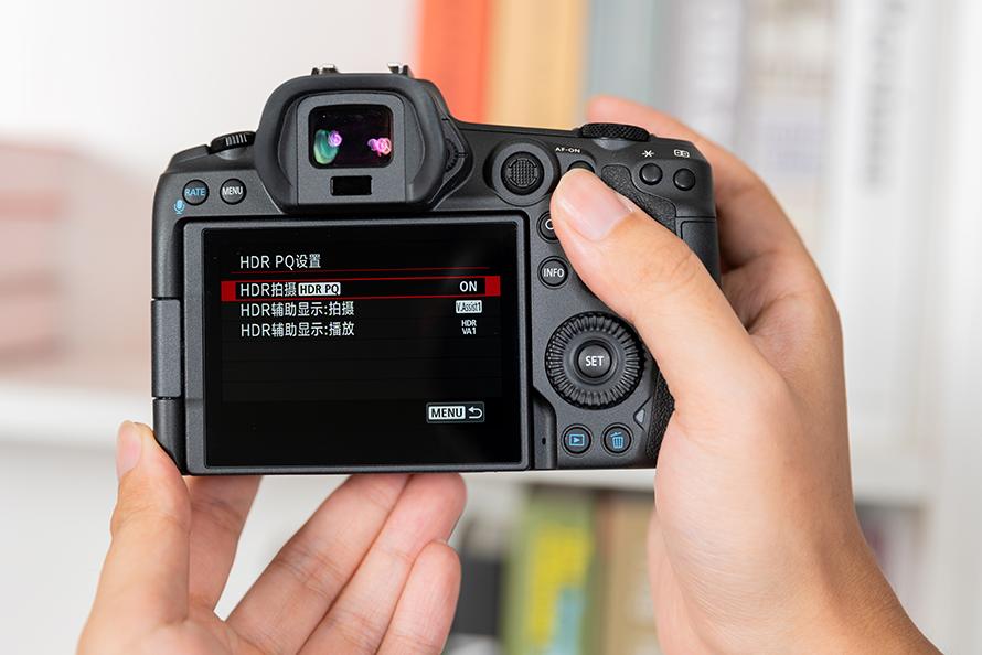 DSC09302-4.jpg
