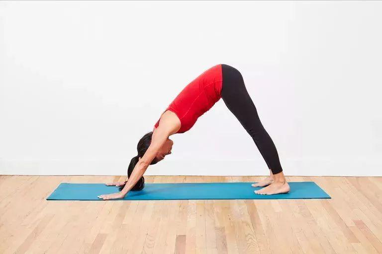 天冷练瑜伽,除了拜日,瑜伽还可以怎么热身? 生活头条 第8张