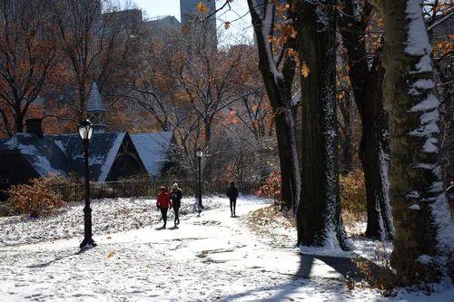 2019年12月3日,游客在美国纽约中央公园欣赏雪景。新华社发