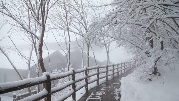 云台山迎入冬第一场雪,游客:像仙境一样