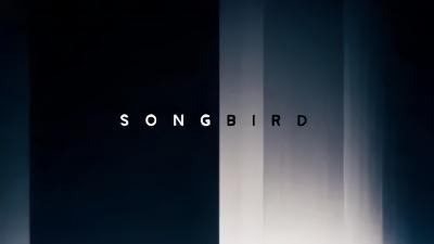 传染病题材惊悚片《鸣鸟》将拍摄,《变形金刚》导演任制片