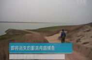 鸬鹚捕鱼文化在鄱阳湖畔传承