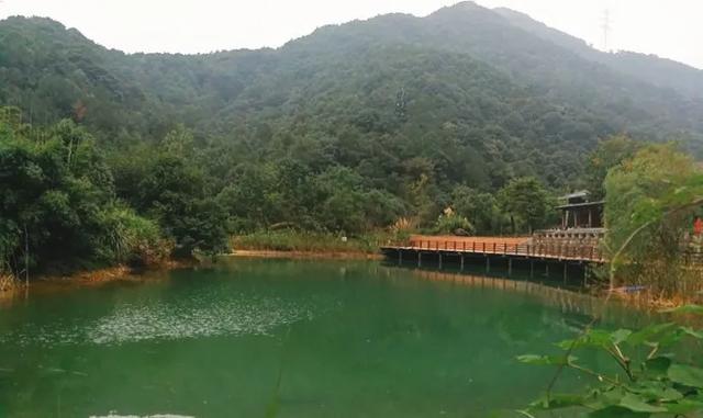 趁着五一未到!来杭州这些景区景点免费畅玩吧 行业资讯 第9张