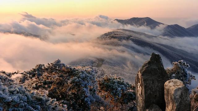 趁着五一未到!来杭州这些景区景点免费畅玩吧 行业资讯 第13张