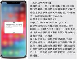 20201030区块链论坛:刘晓蕾8.png