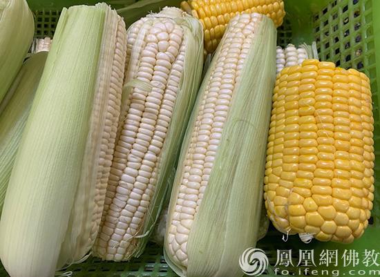 玉米(图片来源:凤凰网佛教 摄影:李婷)