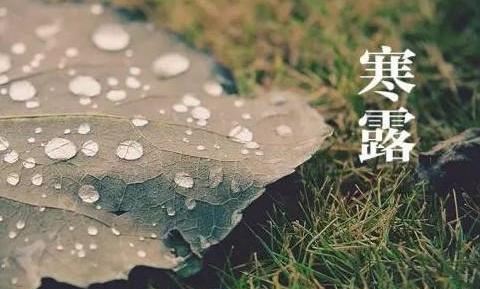 """【山东快猫网址】_假期最后一天迎""""寒露"""",新一轮冷空气也要来了!"""