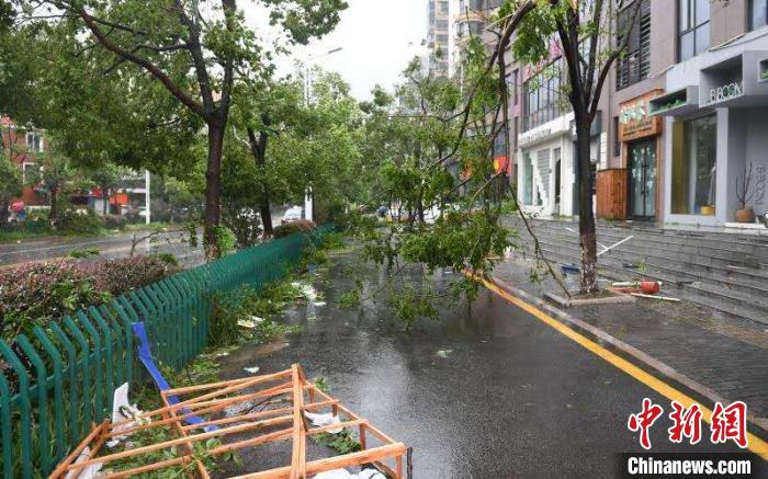 """第4号台风""""黑格比""""袭击浙江乐清后的景象。 王刚 摄"""