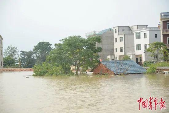 【快照更新】_洪水里,一个信号曾消失的岛乡