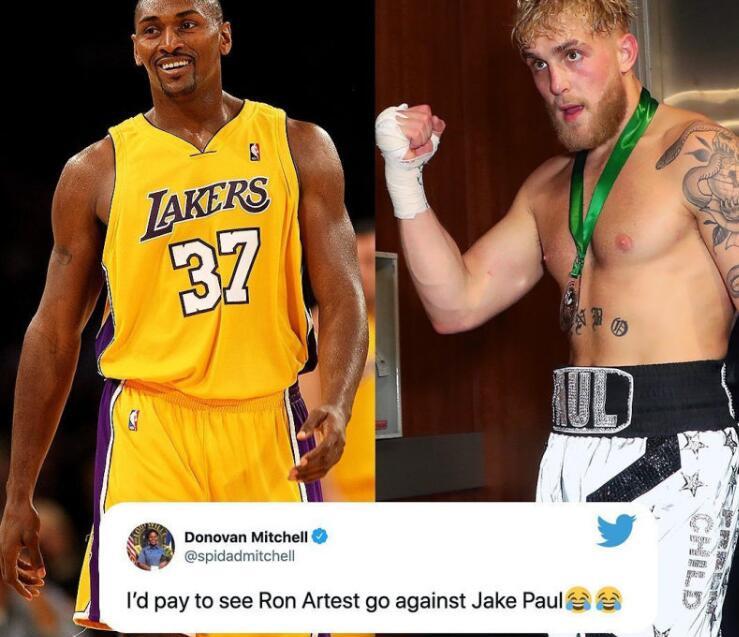 拳王梅威瑟打抱不平!扣篮王拳台遭KO,NBA众星发文调侃