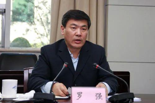 罗强、李刚任四川省副省长 王凤朝辞去副省长职务