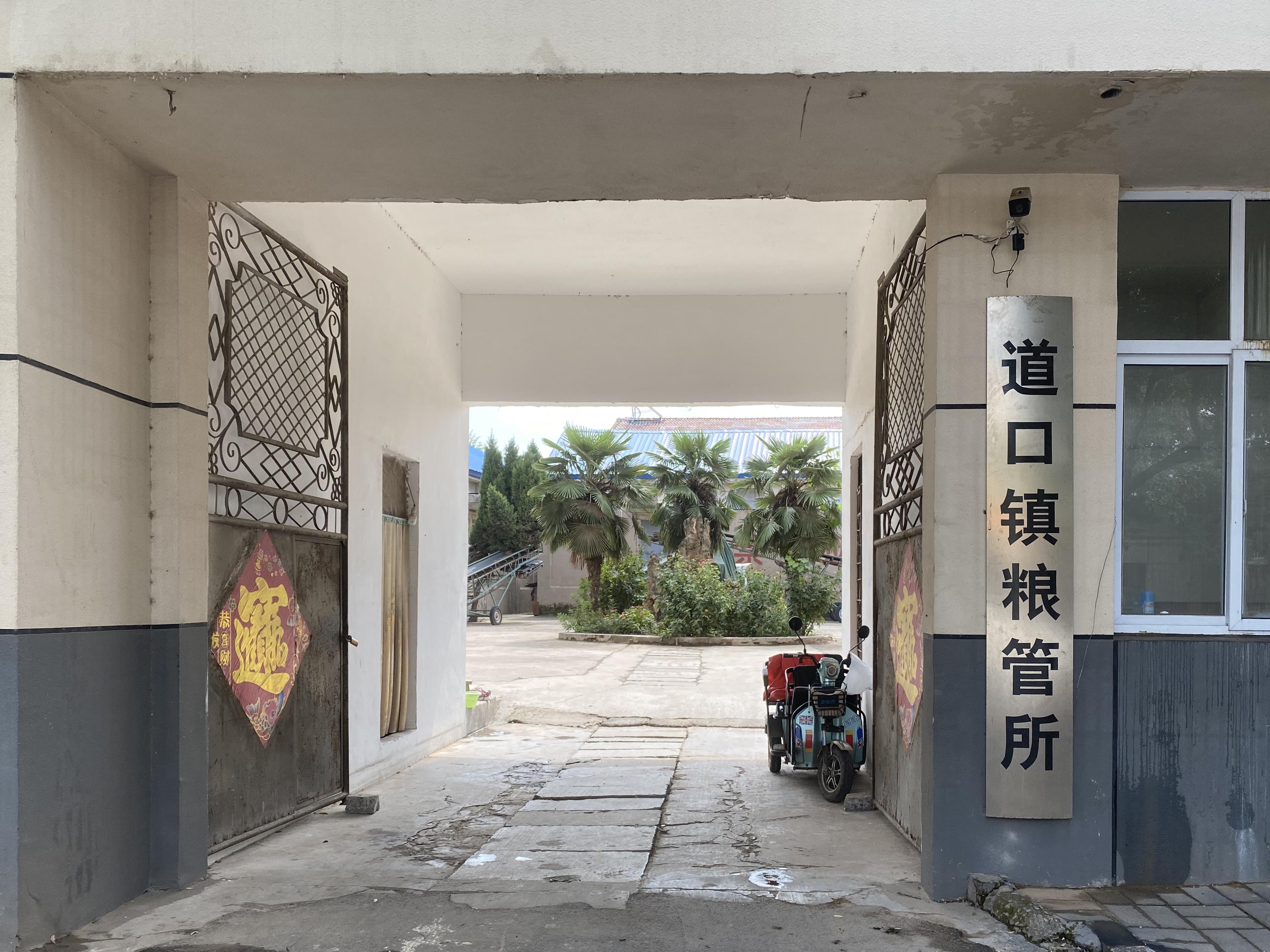 滑县粮库 澎湃新闻记者 陈凌瑶 图