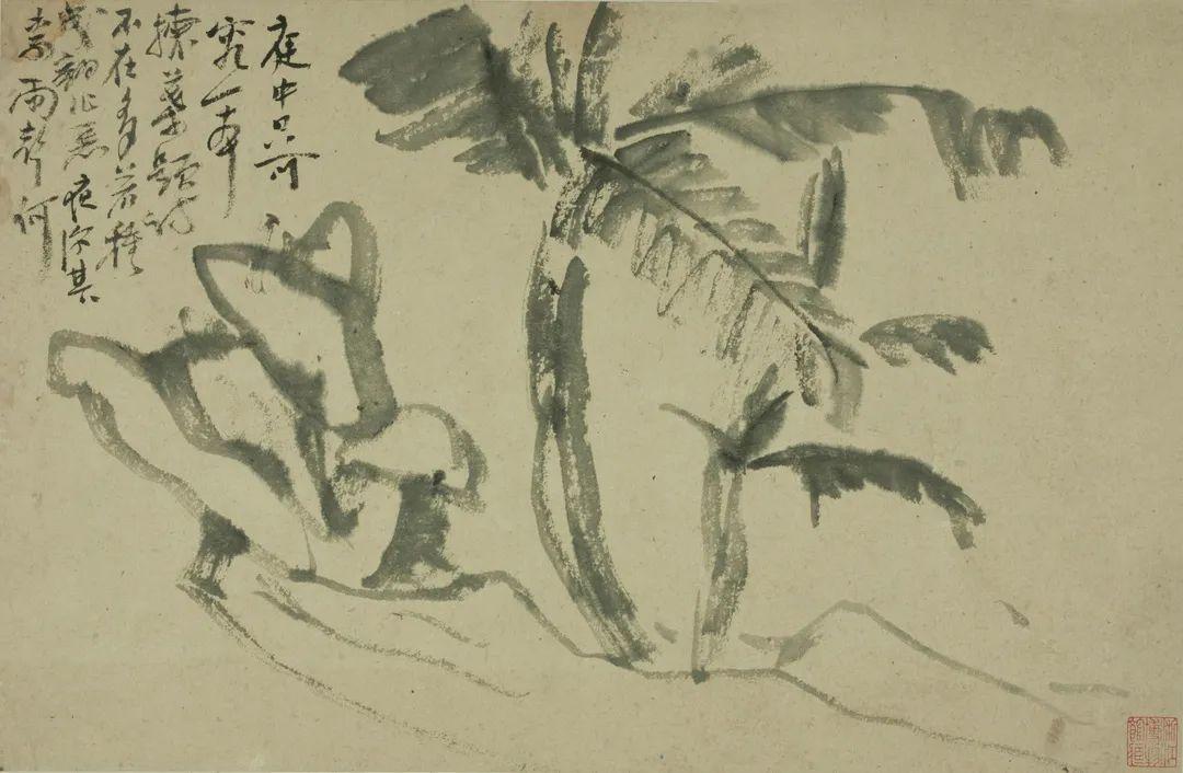 蕉石 黄宾虹 29×44.5cm 浙江省博物馆藏
