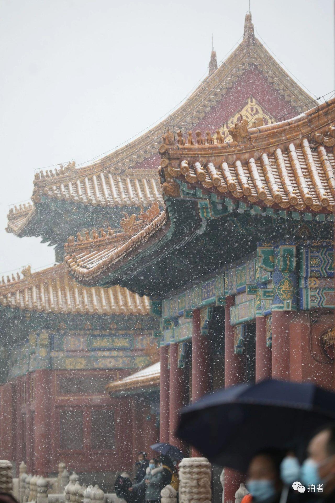 北京初雪最全图集来了!一文看遍城里城外 最新热点 第5张