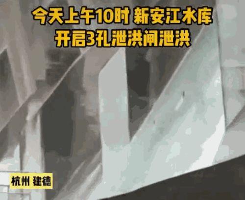 """【谷歌排名】_浙江新安江水库泄洪""""飞鱼""""满天 下游民众疯狂捞鱼"""